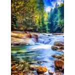 Puzzle  Grafika-T-00875 Belle Cascade dans la Forêt