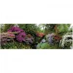 Puzzle  Heye-29473 Alexander von Humboldt : Bodnant Garden