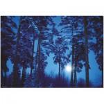 Puzzle  Heye-29625 Binge Eliasson : Pleine Lune