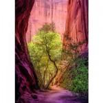 Puzzle  Heye-29944 Singing Canyon