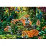 Puzzle  Jumbo-17245 Famille de Tigres à l'Oasis