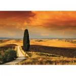 Puzzle  Jumbo-18362 Coucher de soleil en Toscane