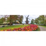 Puzzle  Jumbo-18517 Moulin, Hollande