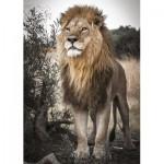 Puzzle  Jumbo-18523 Fierté du Lion