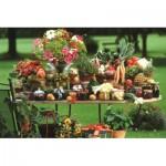 Puzzle  Jumbo-18582 Fruits et Légumes