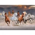 Puzzle   Desert Horses