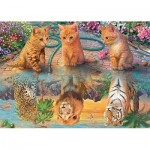 Puzzle   Premium Collection - A Kitten's Dream
