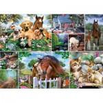 Puzzle   Collage - Animal World