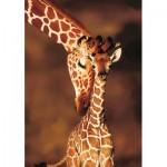 Puzzle  KS-Games-10112 Stunning Giraffes
