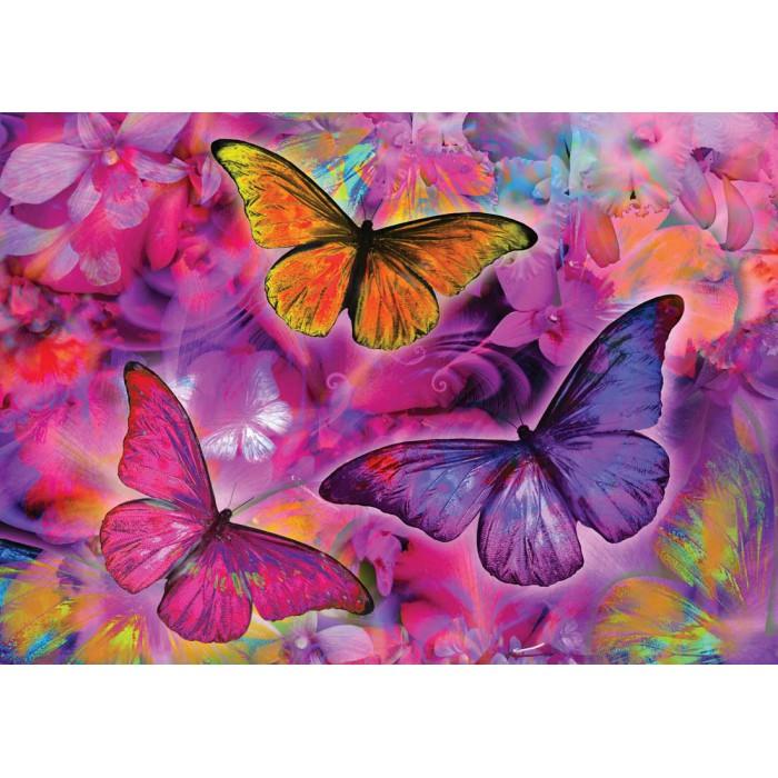 Papillons et Orchidées Arc-en-ciel