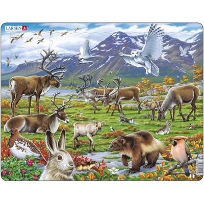 Larsen-FH14 Puzzle Cadre - Les Animaux de Laponie