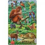 Larsen-H21-2 Puzzle Cadre - Animaux de la Jungle