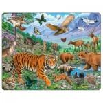 Puzzle Cadre - Tigre