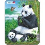 Larsen-V4-1 Puzzle Cadre - Pandas