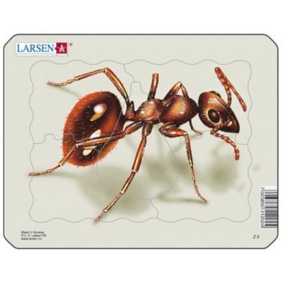 Larsen-Z2-3 Puzzle Cadre - Fourmi