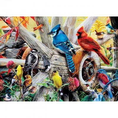 Puzzle Master-Pieces-31978 Backyard Birds