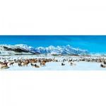 Puzzle   Elk Refuge