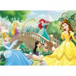 Puzzle  Nathan-86567 Disney Princesses
