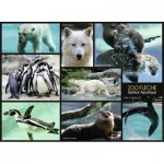 Puzzle  Nathan-86870 Animaux du Zoo