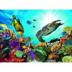 Puzzle   Récif Corallien