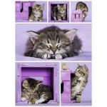 Puzzle  Nathan-87227 Chatons Mignons