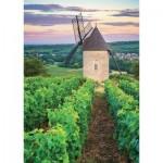 Puzzle  Nathan-87254 Moulin Sorine - Vignoble de Santenay - Bourgogne