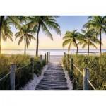 Puzzle  Nathan-87547 Plage de Floride