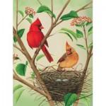 Puzzle  New-York-Puzzle-CB1870 Pièces XXL - Northern Cardinals