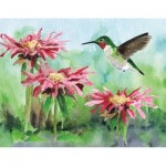 Puzzle  New-York-Puzzle-CB1924 Ruby-throated Hummingbird Mini