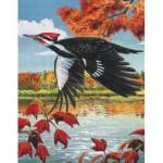Puzzle   Pileated Woodpecker Mini