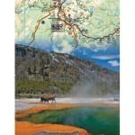 Puzzle   Yellowstone Mini