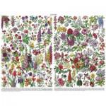 Puzzle  New-York-Puzzle-PD1976 Flowers - Fleurs