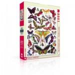 Puzzle  New-York-Puzzle-PD633 Butterflies - Papillons