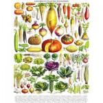 Puzzle  New-York-Puzzle-PD635 Vintage Images - Légumes