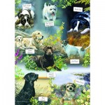 Puzzle  Otter-House-Puzzle-75833 Man's Best Friend