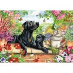 Puzzle   Black Labrador