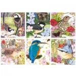 Puzzle   RSPB - Garden Birds