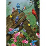 Puzzle  Cobble-Hill-51781 Oiseaux de la Forêt