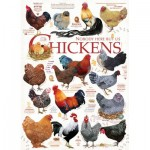 Puzzle  Cobble-Hill-51824 Ashley Davis - Chicken Quotes