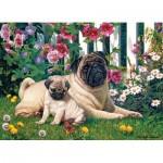 Puzzle  Cobble-Hill-51839 Pug Family