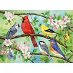 Puzzle  Cobble-Hill-54606 Pièces XXL - Bloomin' Birds