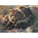 Puzzle  Cobble-Hill-54624 Pièces XXL - Grizzly Family