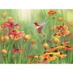Puzzle  Cobble-Hill-57160 Pièces XXL - Rufous Hummingbird