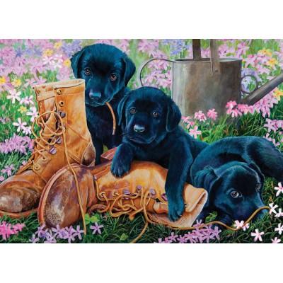 Puzzle Cobble-Hill-58851 Les chiots Labrador Noirs