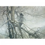 Puzzle  Cobble-Hill-80037 Robert Bateman : Le Fantôme du Nord