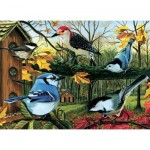 Puzzle  Cobble-Hill-80053 Blue Jay And Friends