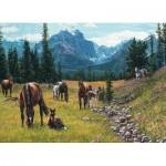 Puzzle  Cobble-Hill-80113 Horse Meadow