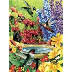 Puzzle  Cobble-Hill-85020 Pièces XXL - Hummingbird Garden