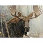 Puzzle  Cobble-Hill-85028 Pièces XXL - Bull Moose