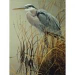 Puzzle  Cobble-Hill-85029 Pièces XXL - Great Blue Heron